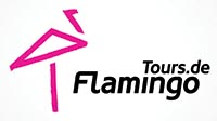 flamingo-tours_logo_S
